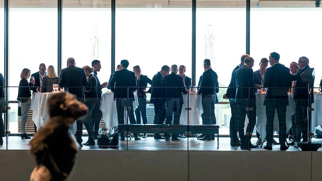 Møder og konferencer på Moesgaard Museum Aarhus