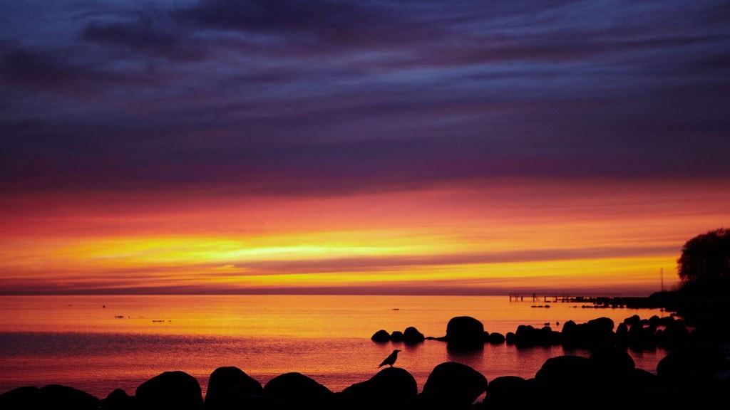 Morgentur ved Ballahage strand