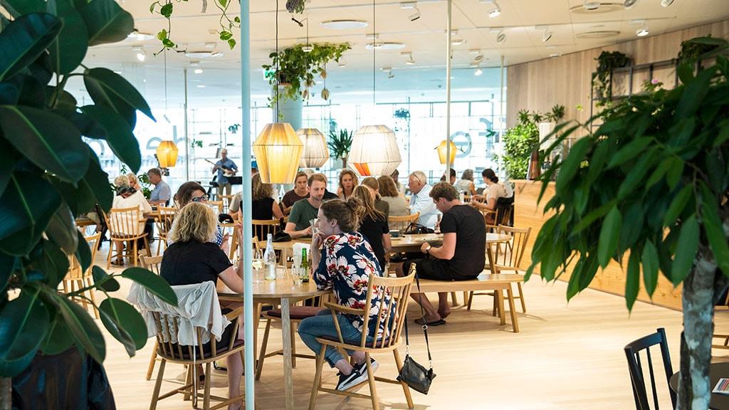 Hygge og god mad i ARoS Café og Orangeri