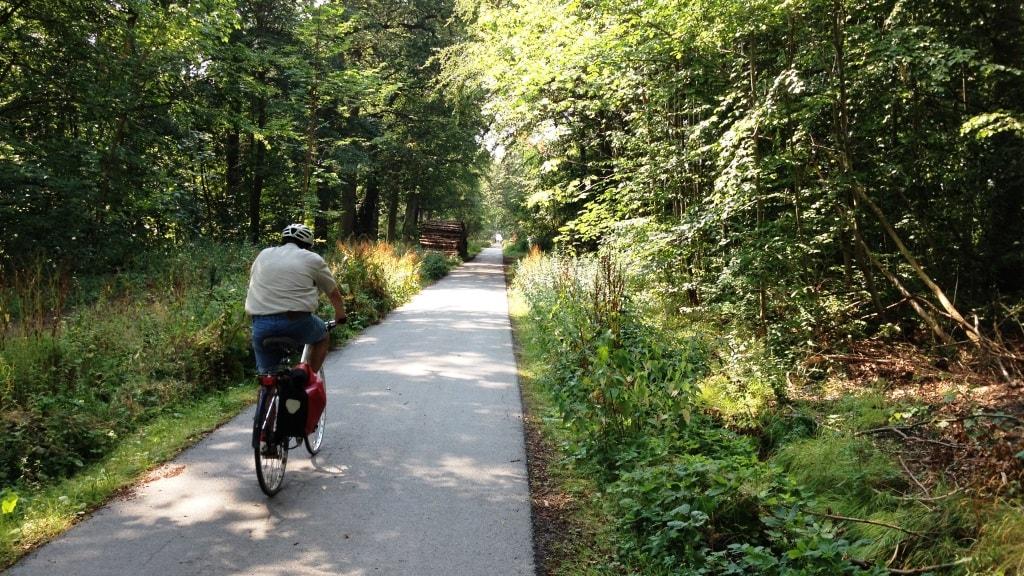 Kongelunden cykelsti